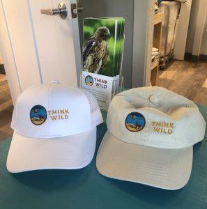 Think Wild Logo Snapback and Regular Hats
