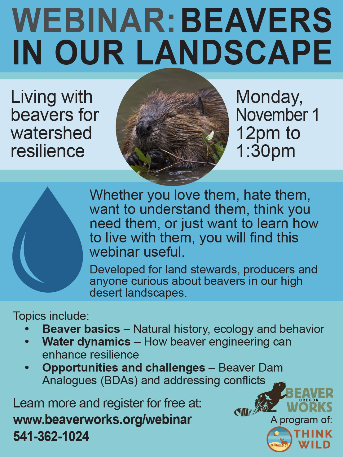 Beavers in Our Landacapes